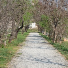 Antic camí recuperat. Març 2014